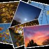 L'automne en Hiver